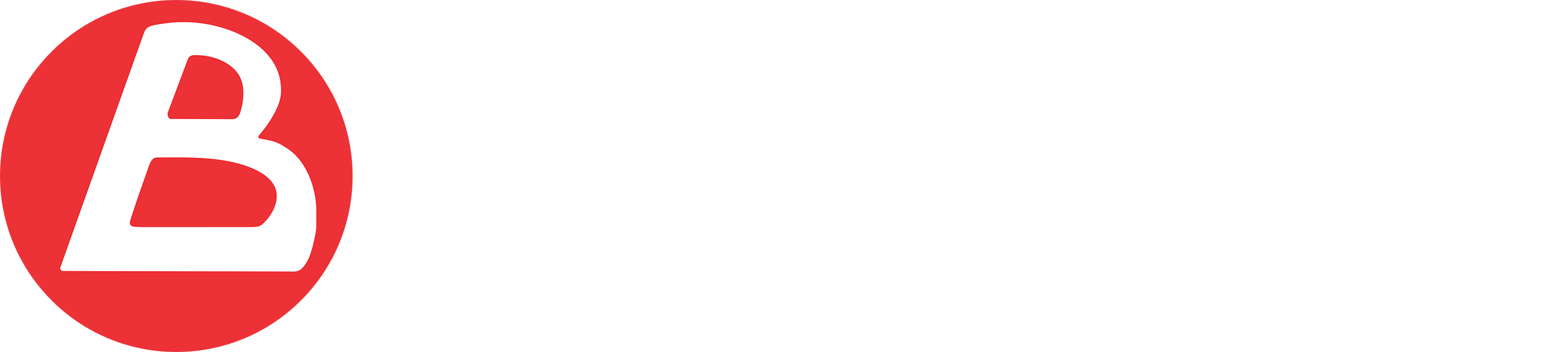 Laboratorio  Brunelli S.R.L
